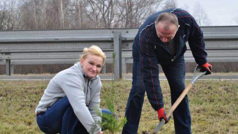 Akcja sadzenia drzew w Radomiu.
